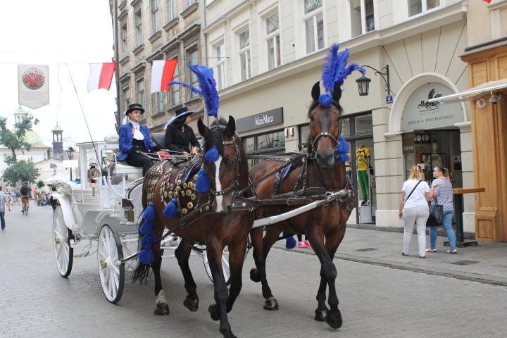 Travel Guide to Kraków,Poland