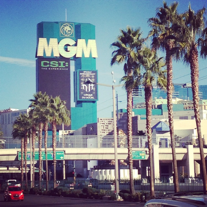 Why Not? – Las Vegas2015